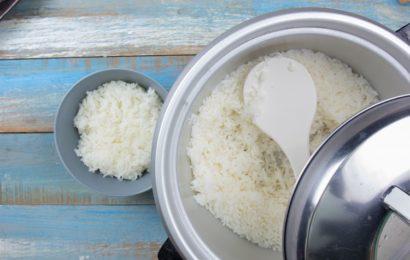 Comment choisir son cuiseur de riz japonais ?